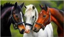 Trije konji